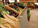 Torba Farmer's MarketShop the freshest produce straight from local farms and enjoy fresh food, drinks and plenty of local dishes as the Torba Farmer's Market returns for its third season. Grab a seat and watch the kids play.Nov 16, Sat 8am-8pm. Ceremonial Court, Education City (3067 2516).