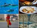 Best things to do in Doha this weekend